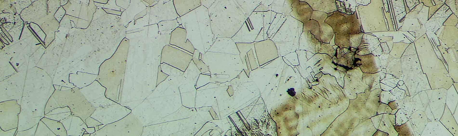 بررسی میکروسکوپمتالوگرافی تولیدی شرکت نانوپژوهان راگا